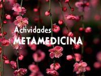 meta_mini